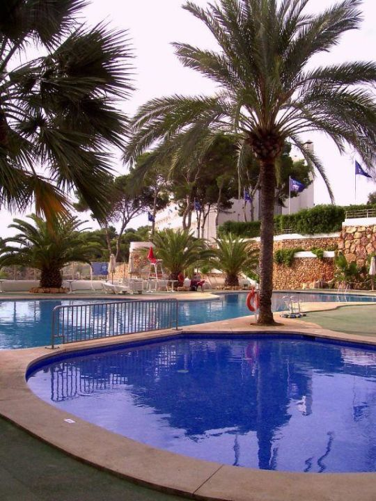 Blick über den Pool AluaSoul Mallorca Resort