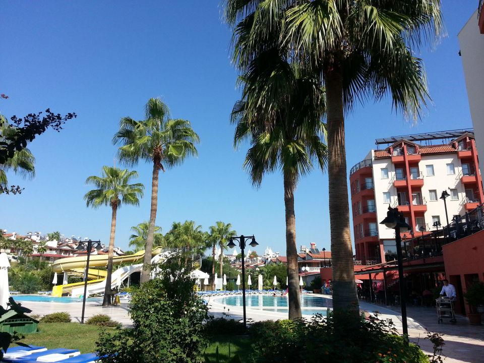 Blick zum pool aus dem garten royal atlantis beach hotel for Garten pool 4m
