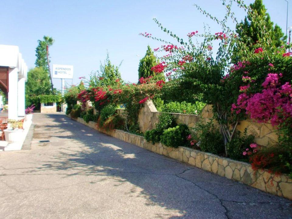 Außenanlage Yalihan Aspendos