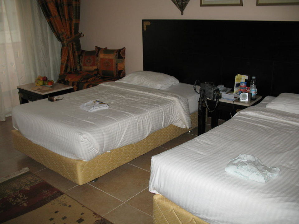 Unser Zimmer Albatros Palace Resort