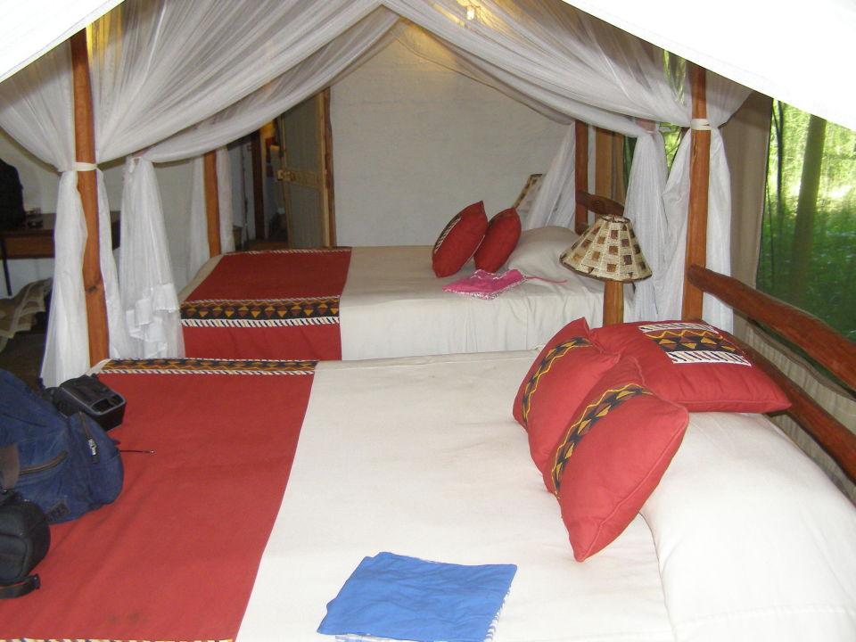 Schlaf bzw wohnzimmer camp oloshaiki masai mara - Schlaf wohnzimmer ...