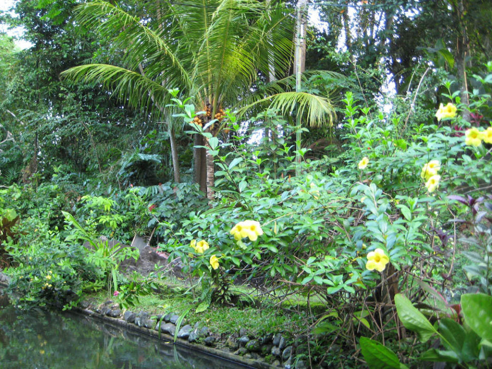 Garten Jiwa Damai Jiwa Damai Retreat Bali