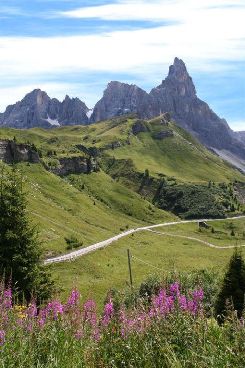 Rollerpass: Kurvenspaß im Naturwunder Hotel Diana