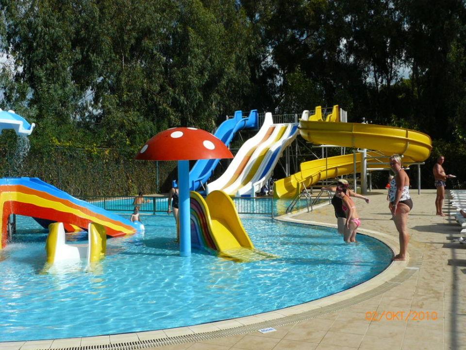 Pool Hotel Top