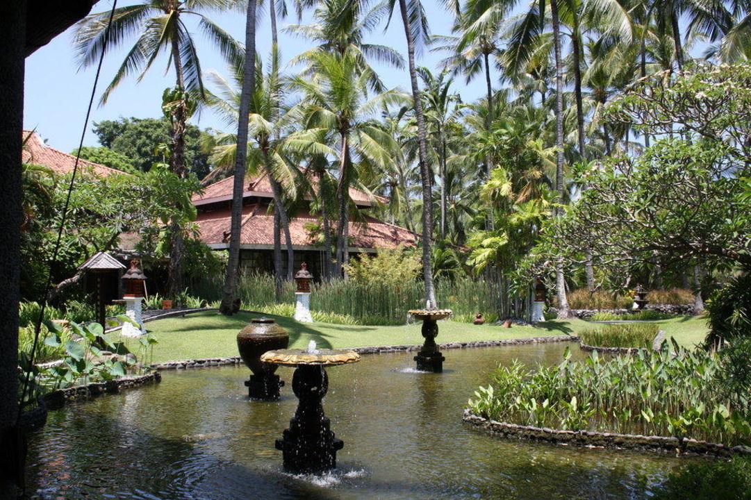 Teich Melia Bali