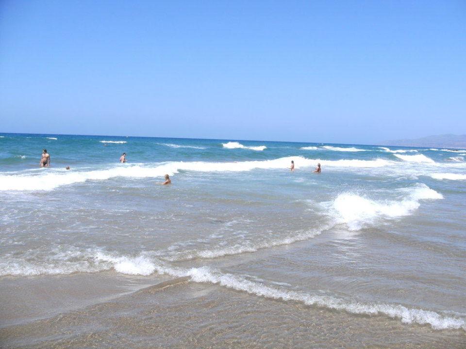 Der Strand des Star Beach Royal Belvedere