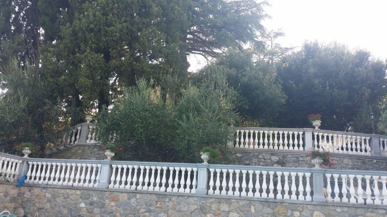 Blick vom Pool zum Hotel Hotel Villa Maria