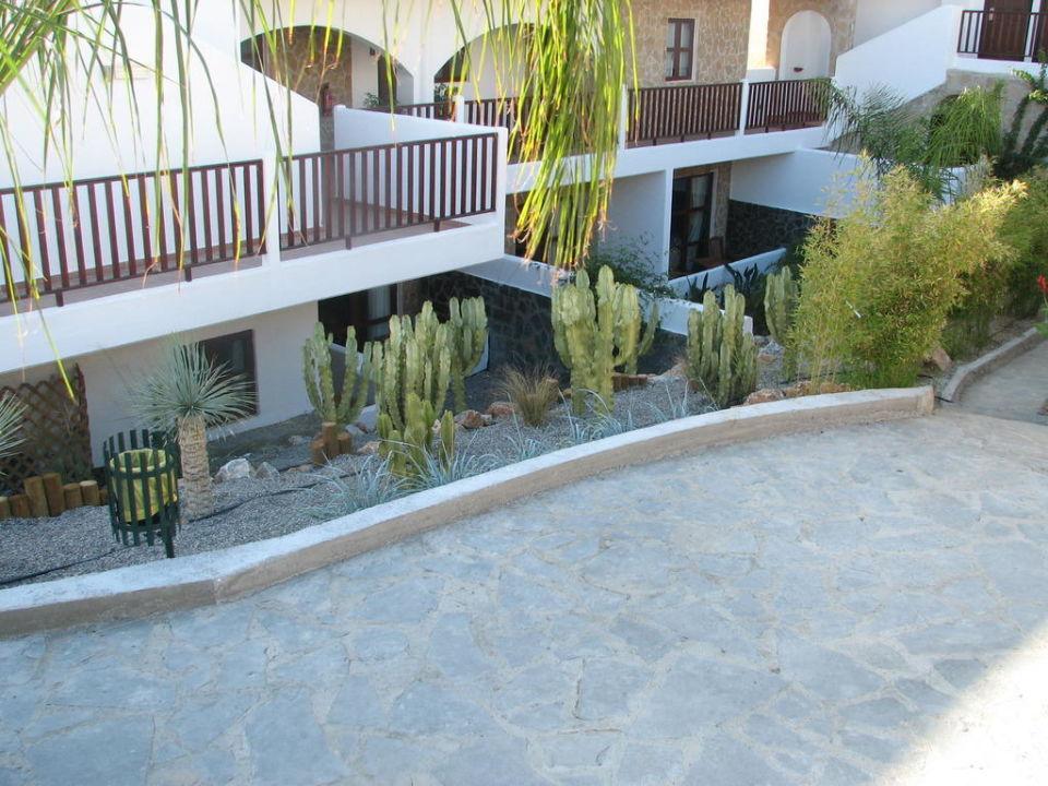 Hotel Hotel Costa Lindia Beach