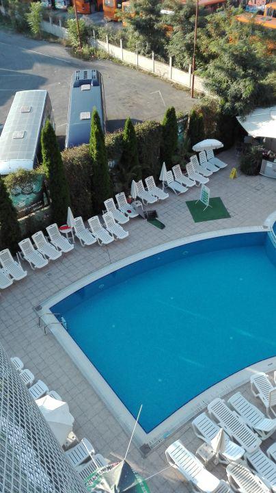 Pool MPM Boomerang
