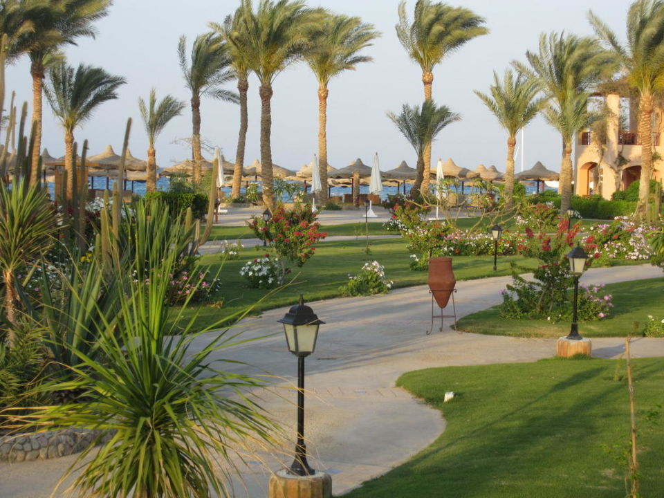 Blick auf den Weg zum Strand abends Hotel Iberotel Makadi Beach