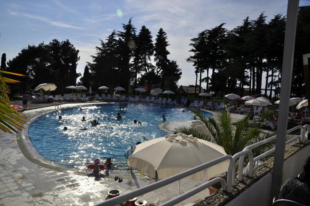 Salzwasser pool des hotels valamar pinia hotel porec holidaycheck istrien kroatien - Pool salzwasser ...