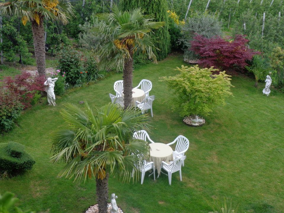 Sehr Schöner Garten Mit Palmen Pension Zum Burggräfler