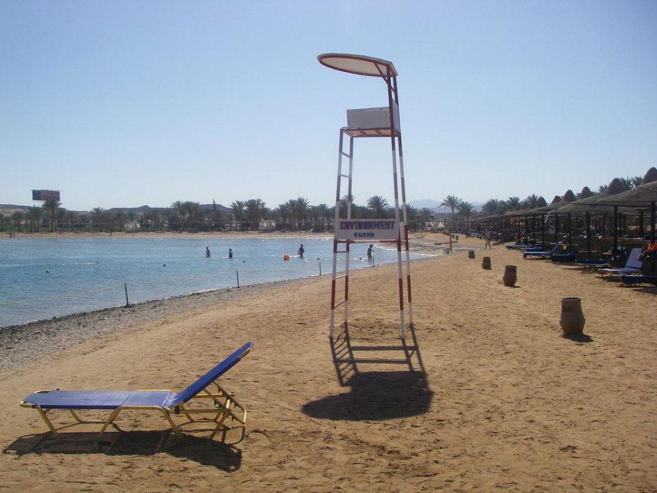 Immer genug Platz Steigenberger Coraya Beach