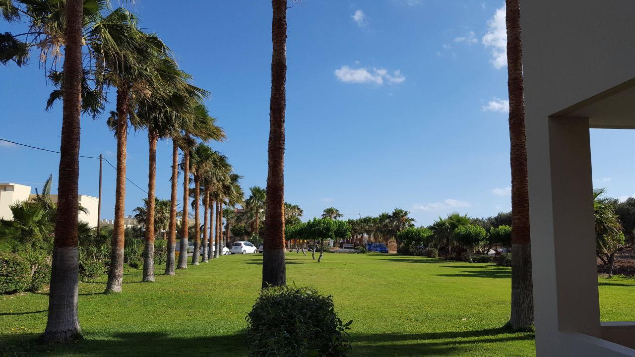 Sehr Gepflegte Grunflachen Sooo Schon Hotel Aeolos Beach Malia