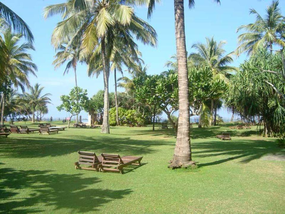 Территория отеля Bentota Beach by Cinnamon