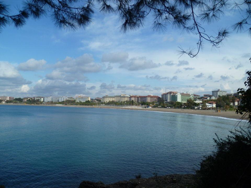 Blick auf den Strand vom natürlichen Bilderrahmen \