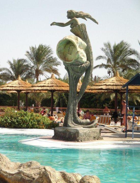 Basen Hotel Seagull Beach Resort
