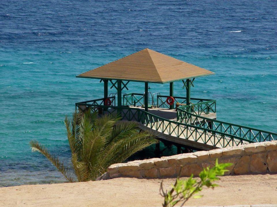 Stag zum Meer The Oberoi Sahl Hasheesh