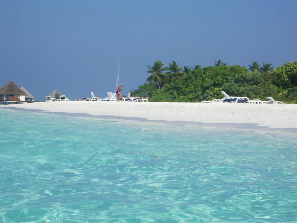 Strand sehr sauber, wunderschön Adaaran Select Meedhupparu Island Resort