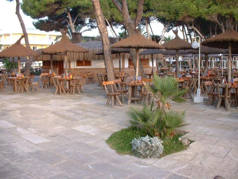 Iberostar Playa de Muro - Abendbar Iberostar Playa de Muro