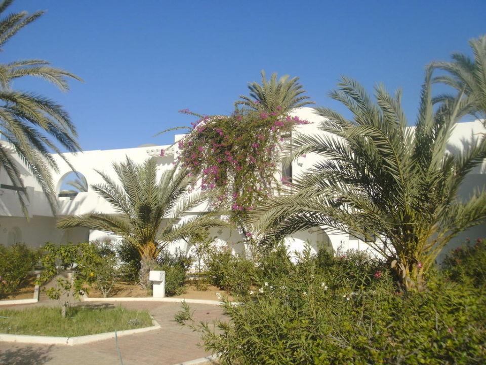 Garten Hotel Seabel Aladin Djerba