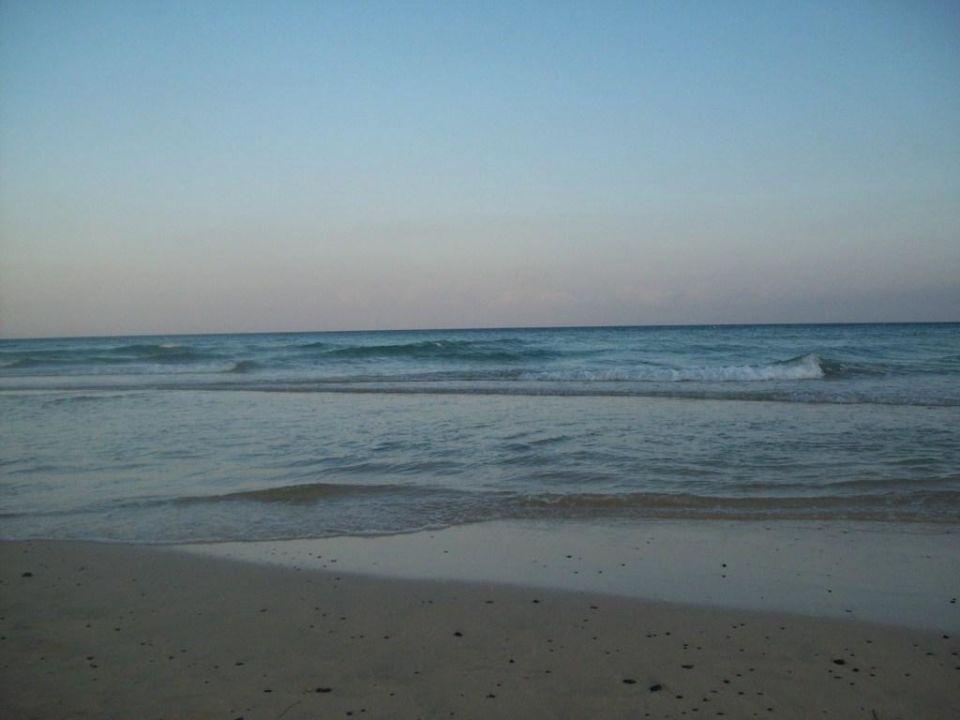 Traumhafter Strand Iberostar Playa Gaviotas
