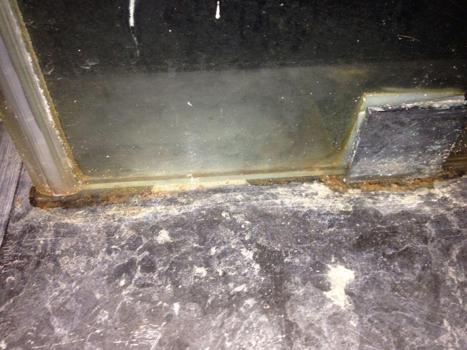 So sah die Duschkabine aus The Bosque Hotel