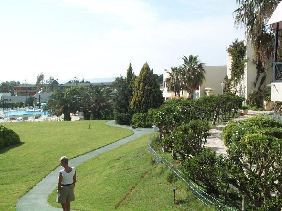 Sehr schöne Anlage und Pool Numa Palma Hotel