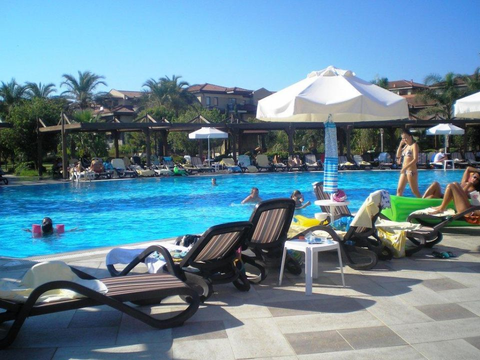 Лежаки у бассейна TUI BLUE Palm Garden