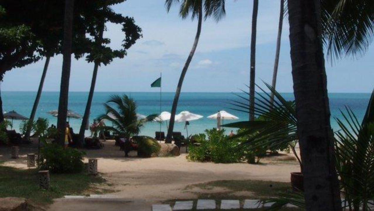 Schöne Anlage Samui New Star Resort