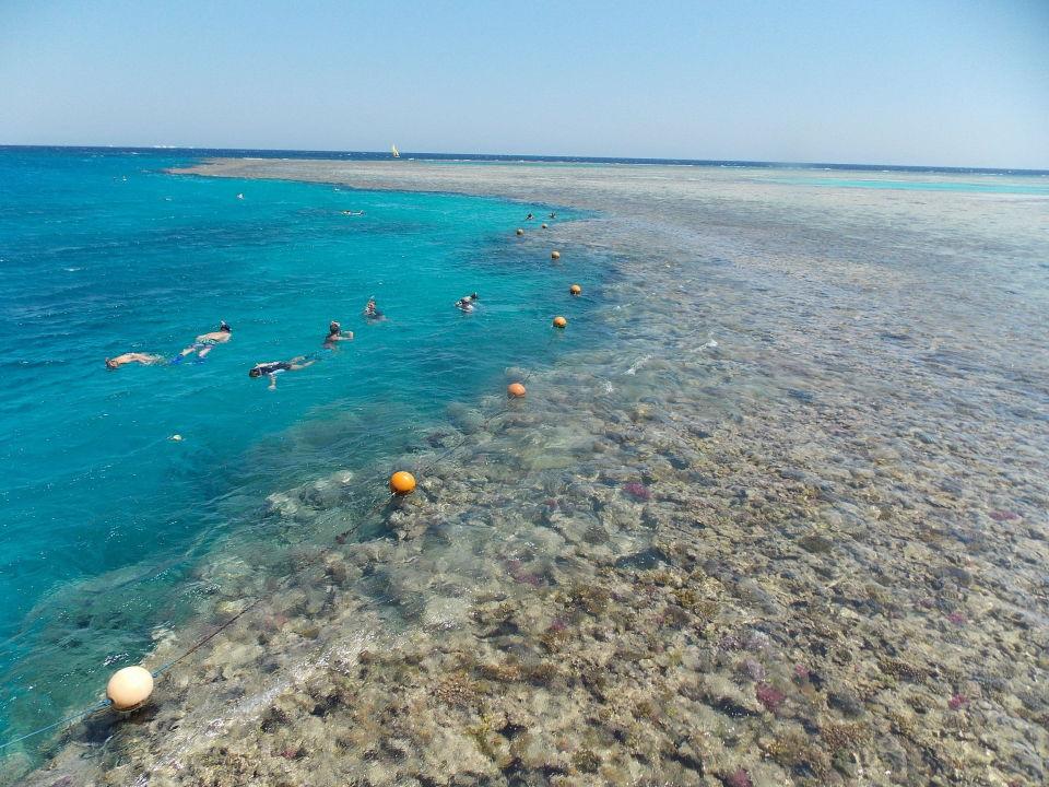 Stella Di Mare Beach Resort Spa Makadi Bay