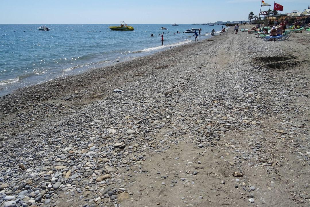 Sehr Schlechter Strand Alan Xafira Deluxe Resort Spa Avsallar