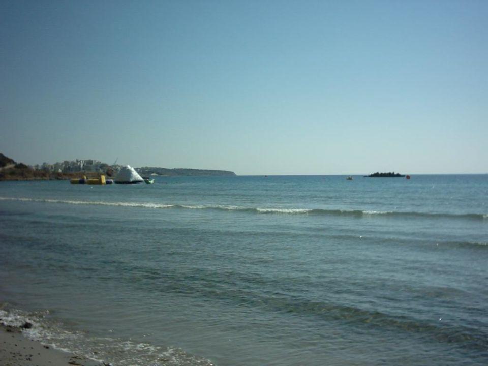 Blick auf den Strand Hotel Almiros Beach