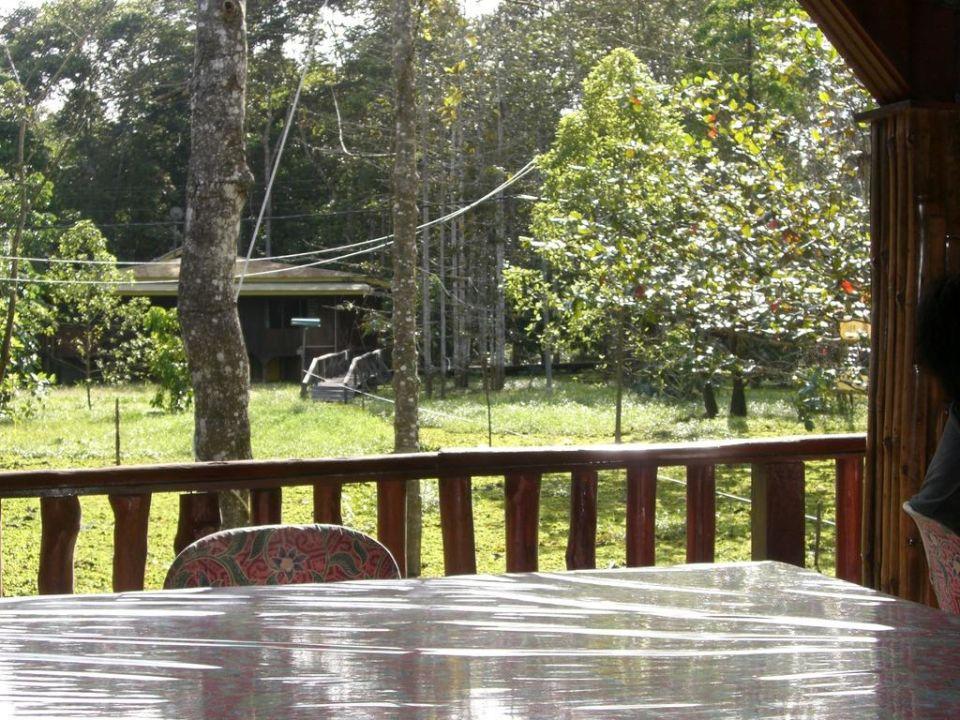 Vom Essensraum Bilit Rainforest Lodge