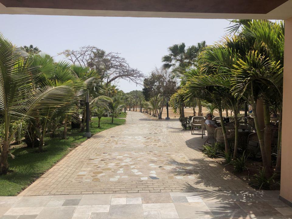 Gartenanlage Hotel Riu Palace Cabo Verde