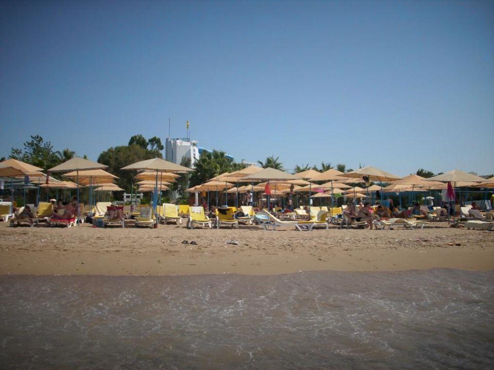 Strandblick vom Wasser aus LABRANDA Excelsior Side