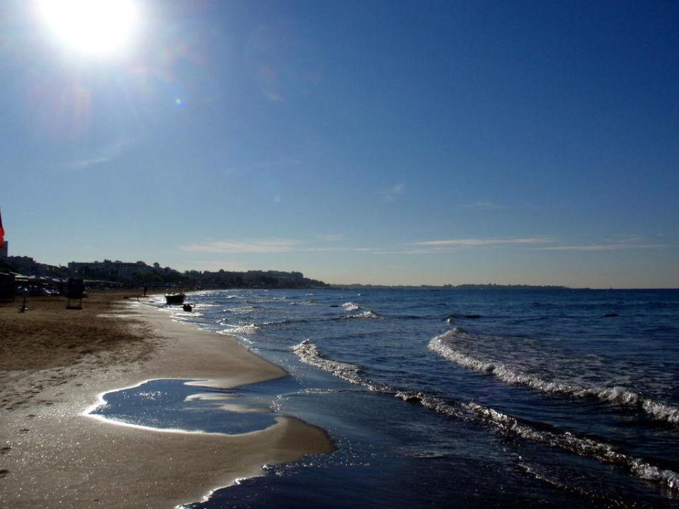 Schöner Strand Paloma Oceana Resort