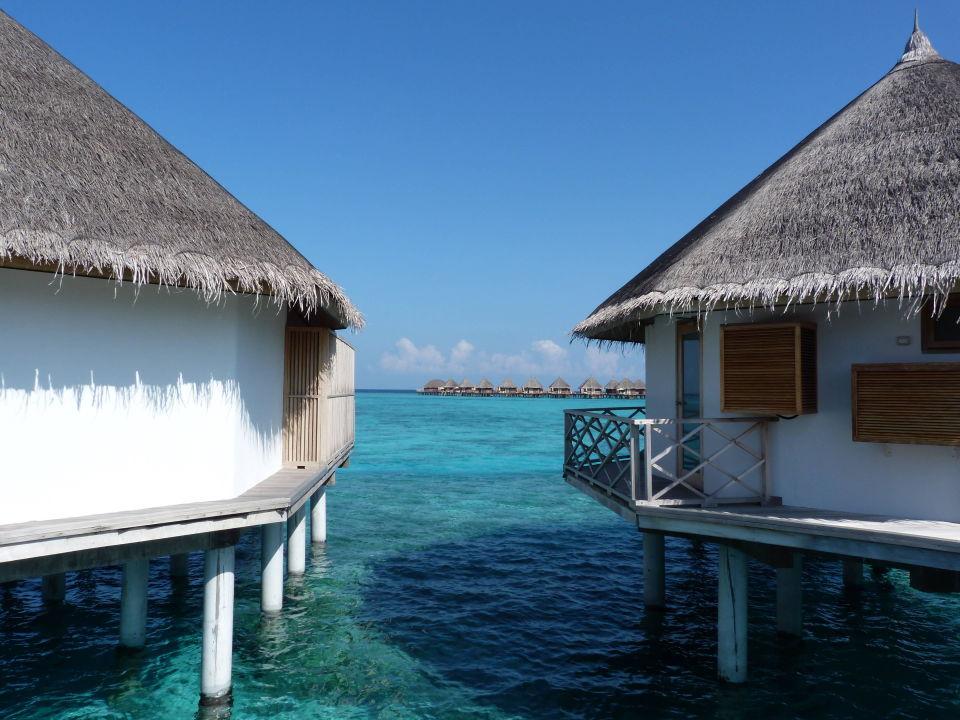 Superior Water Bungalows Hotel Angaga Island Resort