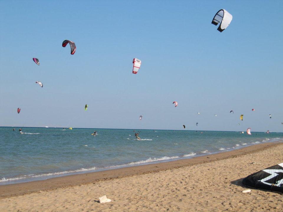 Kites neben Privatstrand Steigenberger Golf Resort El Gouna