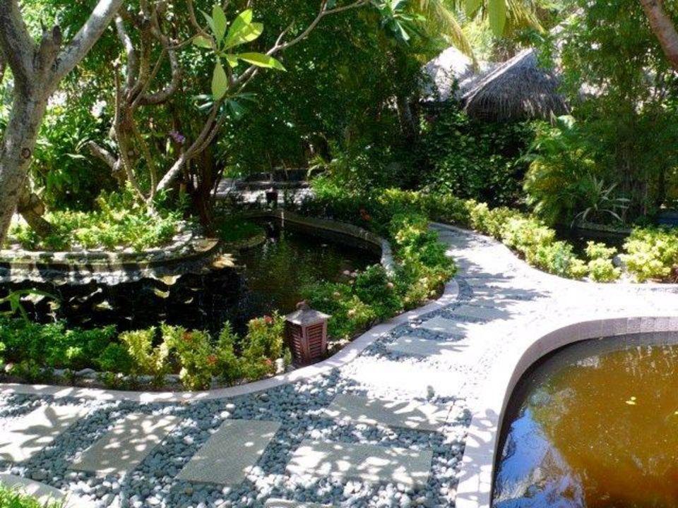 SPA-Bereich Sun Island  Resort & Spa
