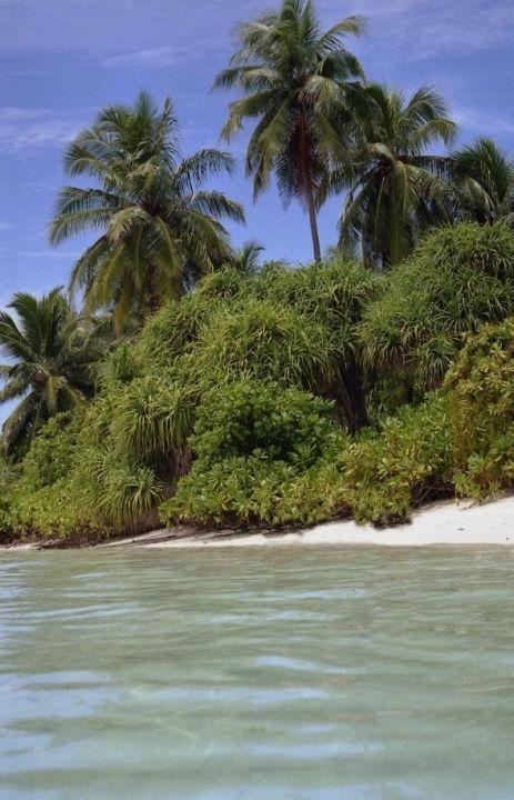 Überfüllter Strand Meeru Island Resort & Spa