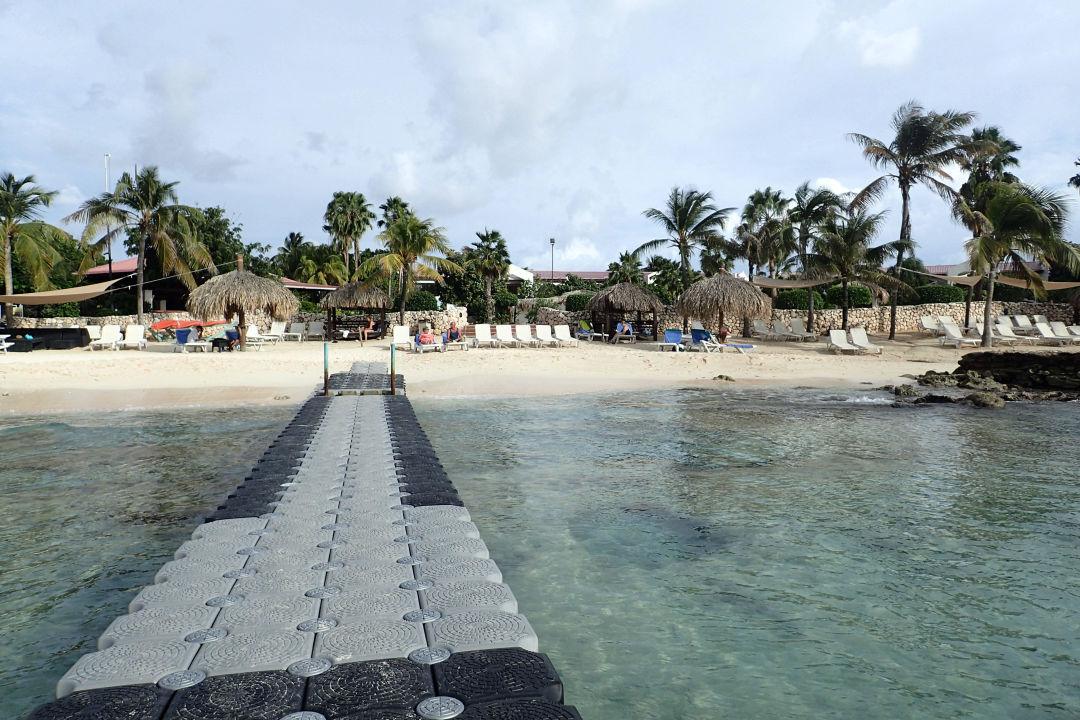 Ponton, sonst Badeschuhe nötig Hotel Plaza Resort Bonaire