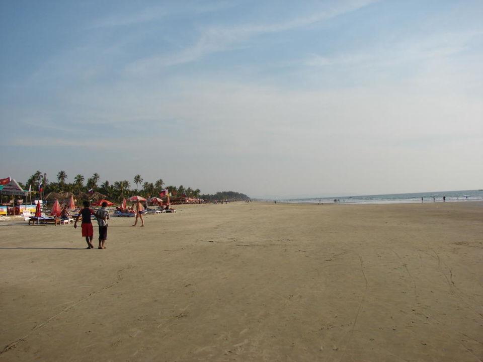 Plaza Hotel Royal Orchid Beach Resort Spa Utorda Holidaycheck