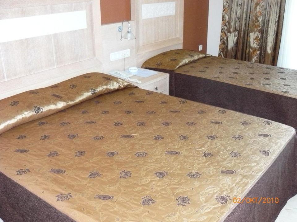 Room Top Hotel
