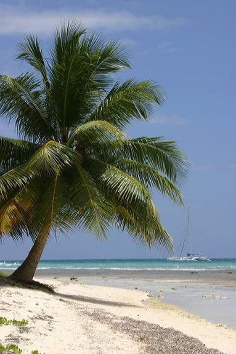 Palme Excellence Punta Cana - Adults only