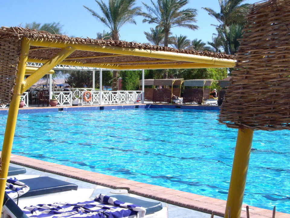 Pool vom Arabia Bel Air Azur Resort - Adults only