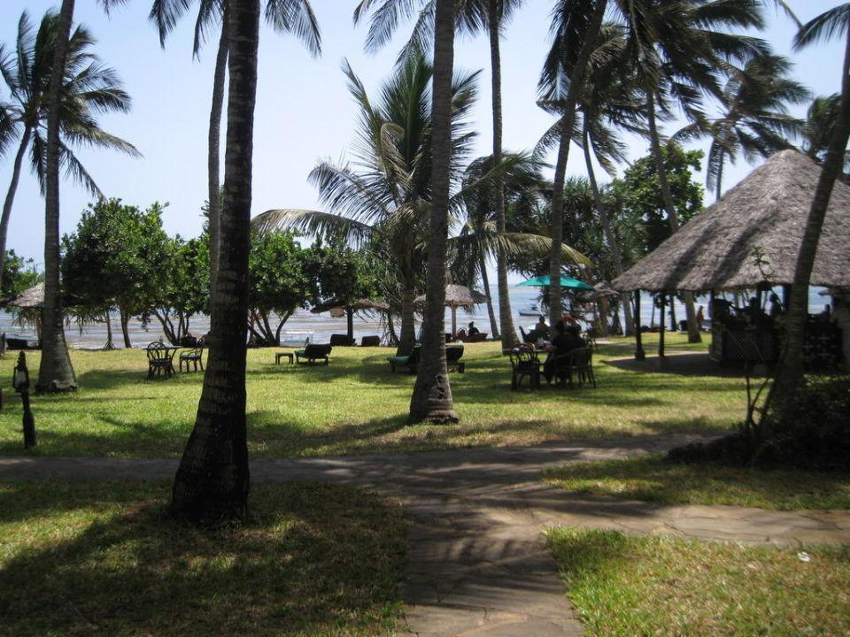 Garten vor Zimmer 90 Hotel Serena Beach