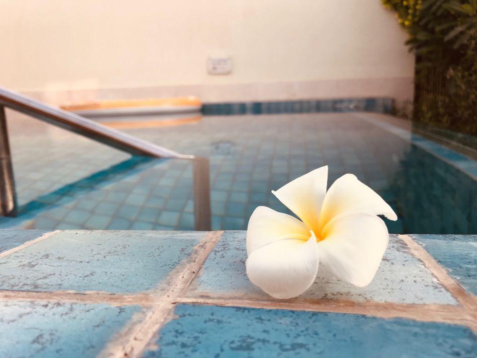 Pool The Ritz-Carlton Ras Al Khaimah Al Hamra Beach
