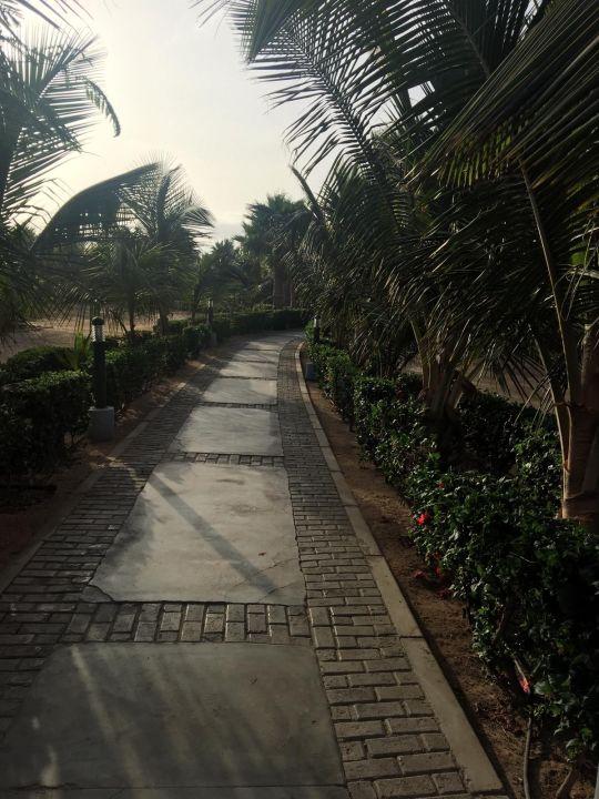 Garten Hotel Riu Palace Cabo Verde