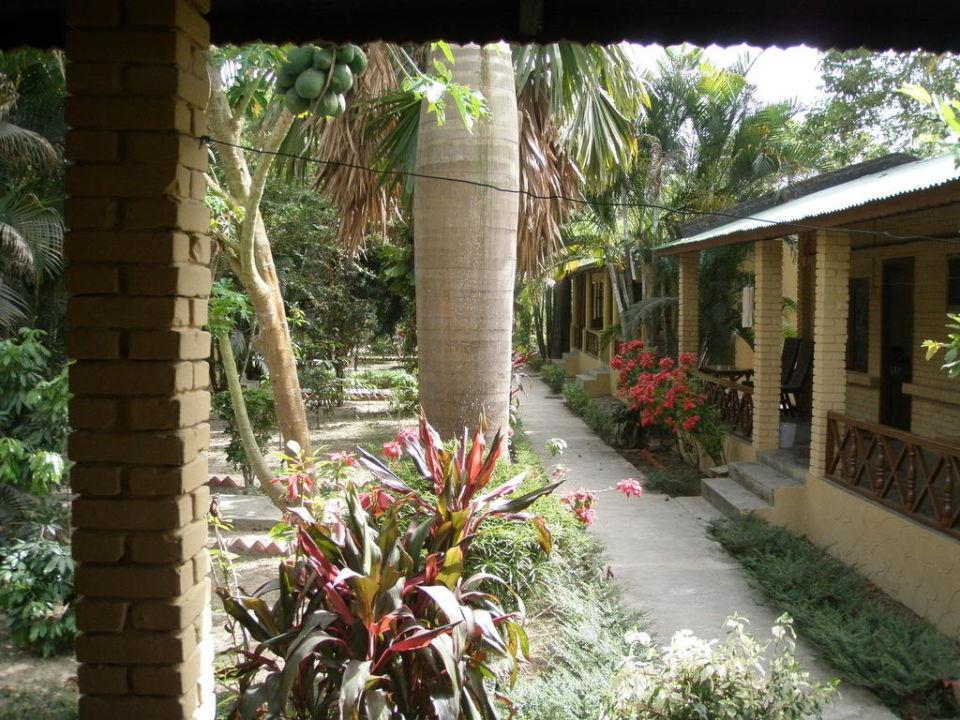 Ogród i taras Rainbow Safari Resort